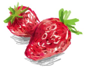 無料 いちごイラスト free strawberry illustration